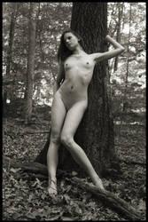 Subtle Curves by NudeDragon