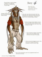 Bary Reference Sheet by beastofoblivion