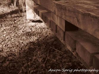 Wood Bridge by aaron-sprig
