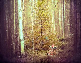 woodland secret by Frama