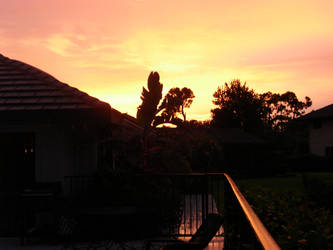 Floridian Sunset 1 by Xionbox