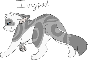 13 Ivypool (Remake) by Icedog-McMuffin