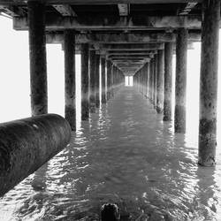 Under The Pier by dujeon