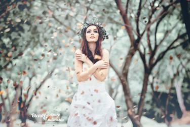 beauty v2 by TizzarFY