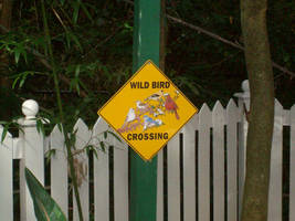 A Weird Crossing Sign... by cooling999
