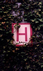 H by SchoolOfThought