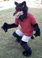 Werewolf partial fursuit by Lacie
