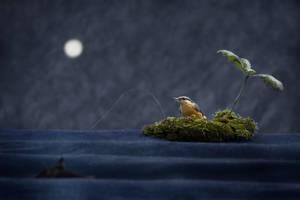 Pecheur de nuit by gwichin