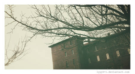 Winter III by lyyy971
