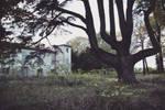 Abandoned castle V by lyyy971