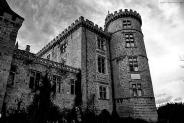 Abandoned castle IX by lyyy971