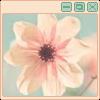 flower by martha-chan