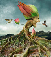 Flower-Man by Taitaviracocha