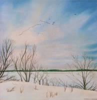 Winter Lake by RobMitchem