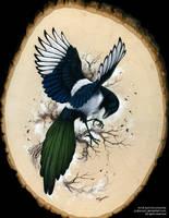 Resplendent Magpie by pallanoph