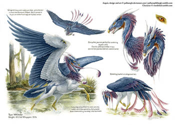 Custom Aequis: Wetlander Tricolored Heron by pallanoph