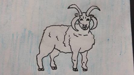 Sheep by DavidTheGreat5