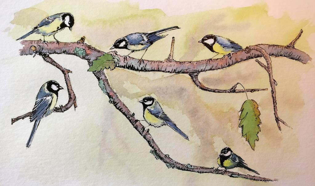 Aviary tribunal by archiwyzard