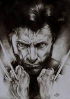 The Wolverine by Kiriyan