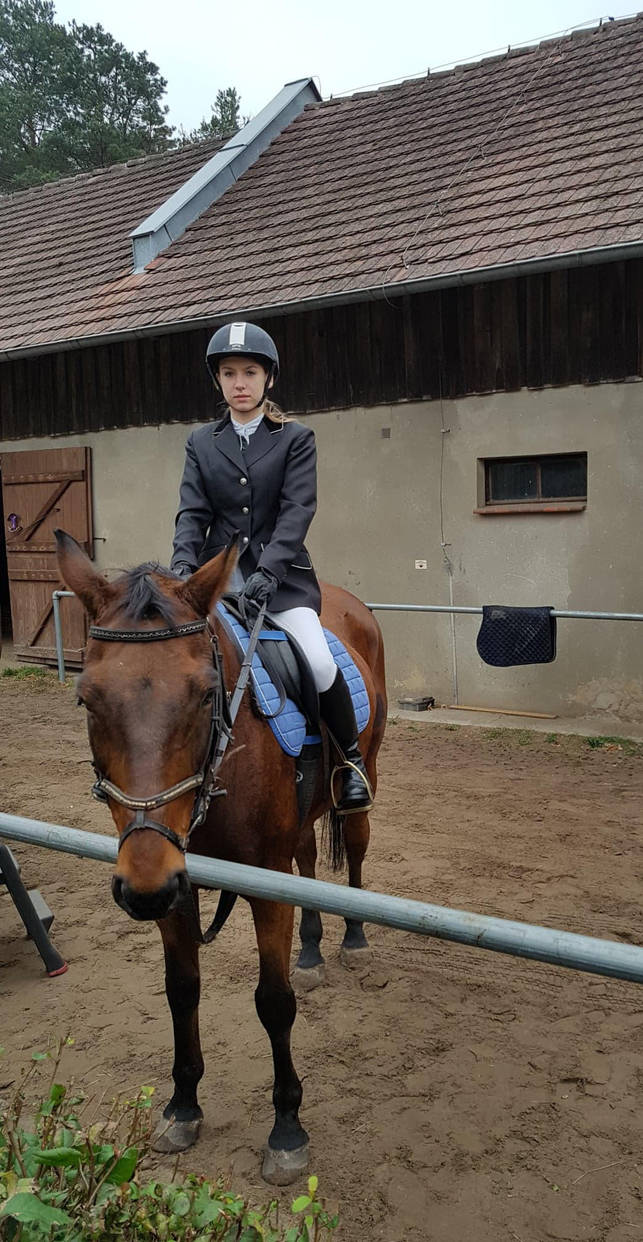 Rider by marien-von-merryen