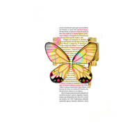 texture butterfly by allglamourcolourpink