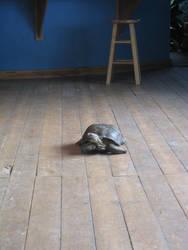 Slowly Through the Room by NutBunnies