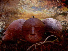 Dreams To Rust by Bark