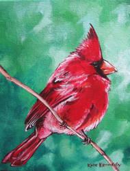 Fat Cardinal by SeaAngel2133