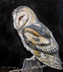 Tyto alba by SeaAngel2133