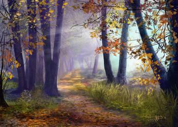 Autumn / Fall by tonyhurst