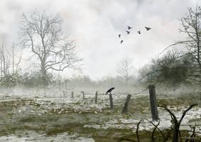 Bleak by tonyhurst