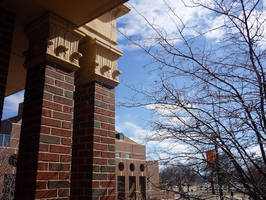 Spring at OSU by cyankali
