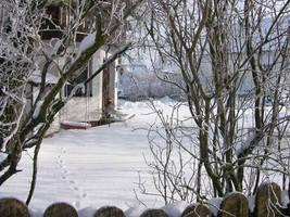 winter3 by cyankali
