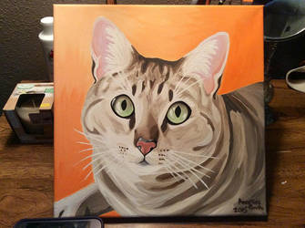 Abby (Cat) by Rumpy1993