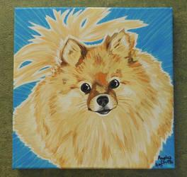 Pomeranian (Beans) by Rumpy1993