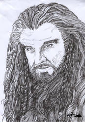 Thorin Oakenshield from The Hobbit by mcsaza
