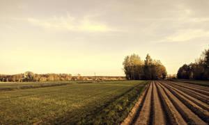 Country Landscape by Rdzeniuch