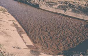 Water by Rdzeniuch