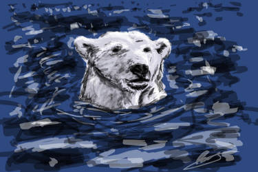Polar bear paint by mitchey93