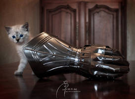 Kitty Armor by MD-Arts