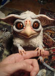small owl by Santani