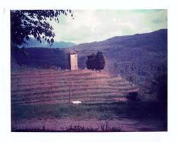 farm_ecologico. by Dronevil