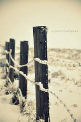 WinterWonderland by beeyoungkuh
