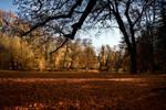 Autumn in Maksimir park II by hrvojemihajlic