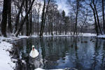 Winter in Maksimir Park XII by hrvojemihajlic