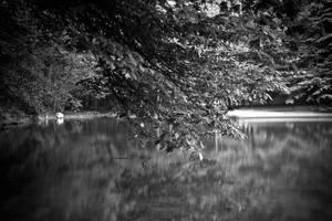 Lonely lake III by hrvojemihajlic