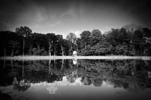 Maksimir Park Noir vol.1 - II by hrvojemihajlic