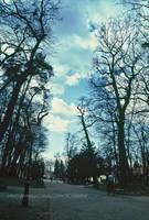 Blue Morning by hrvojemihajlic