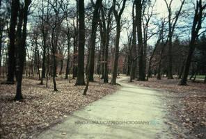 Blue Morning IV by hrvojemihajlic