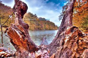 Autumn in MP 09 HDR II by hrvojemihajlic